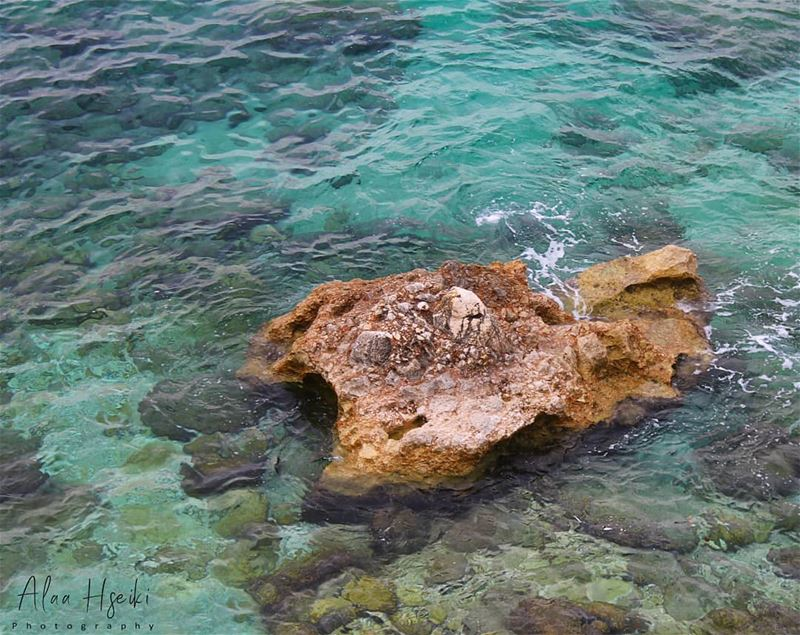 Even a Rock Moves On 🏖️... Hseiki  Lebanon  Chekka  livelovebeirut ... (Chekka)